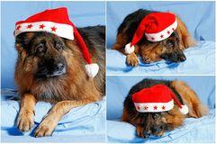 Julie, als Weihnachtsfrau