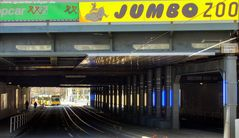 Jumbo Zoo