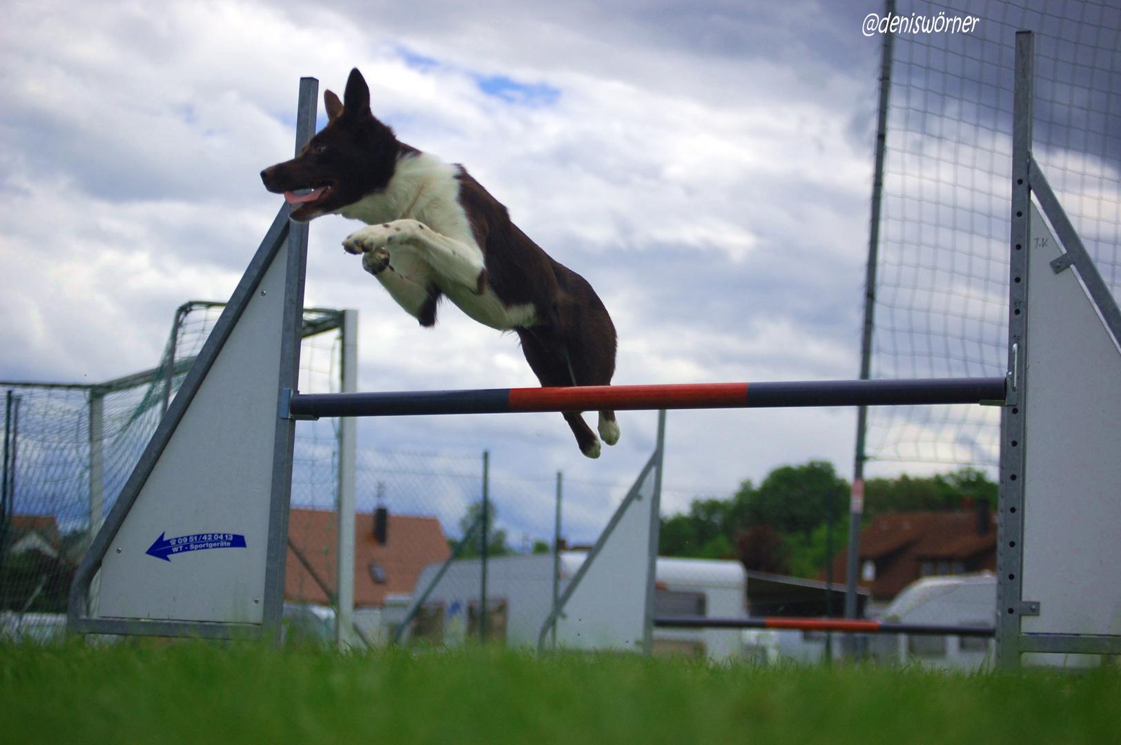 **Jump***