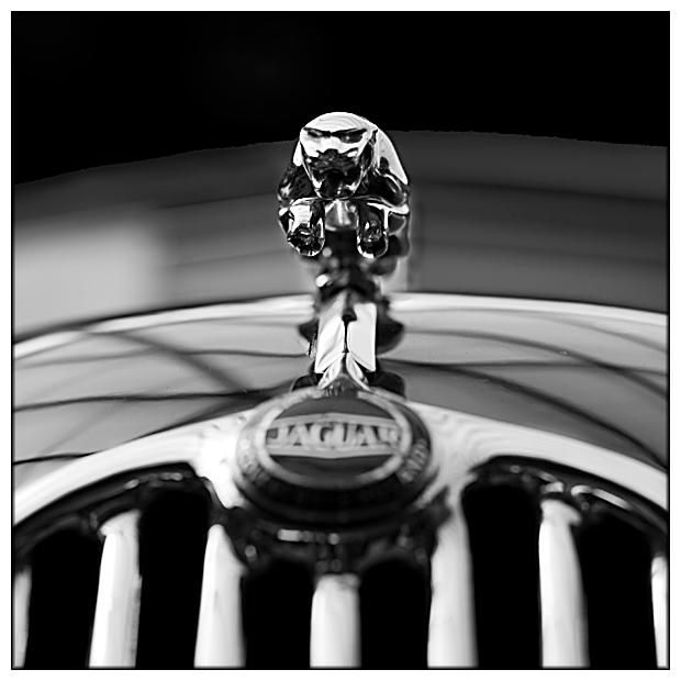 Jumping Jag