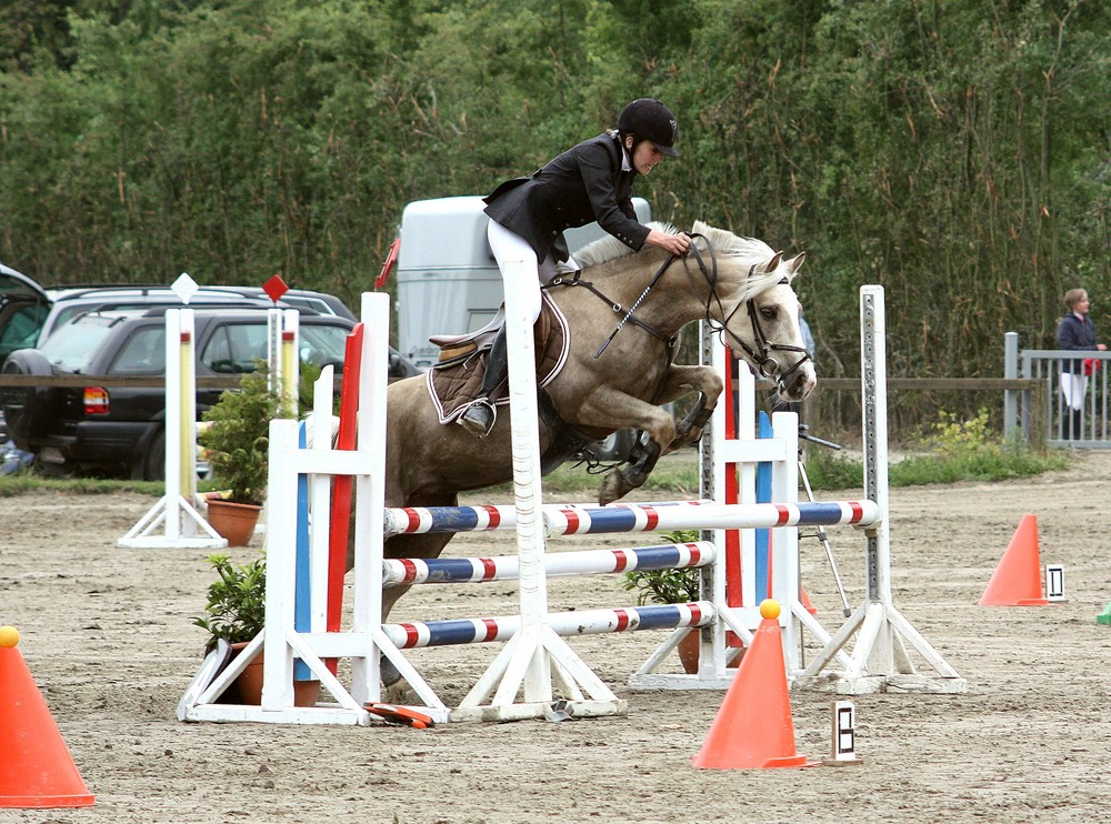 Jumping Poney