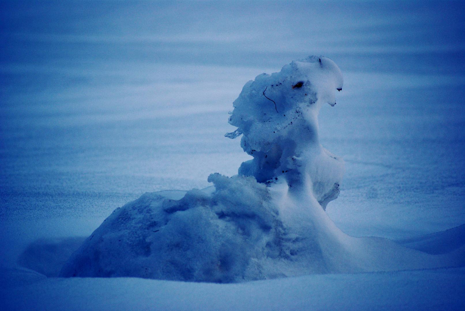 Jungdrache im Schnee