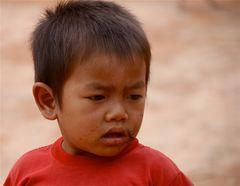 junge, laos 2010