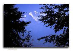 Jungfrau, Berner Oberland