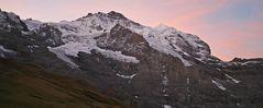 Jungfrau mit Silberhorn im zarten Morgenlicht...