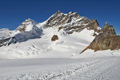 Jungfrau vom Gletscher aus