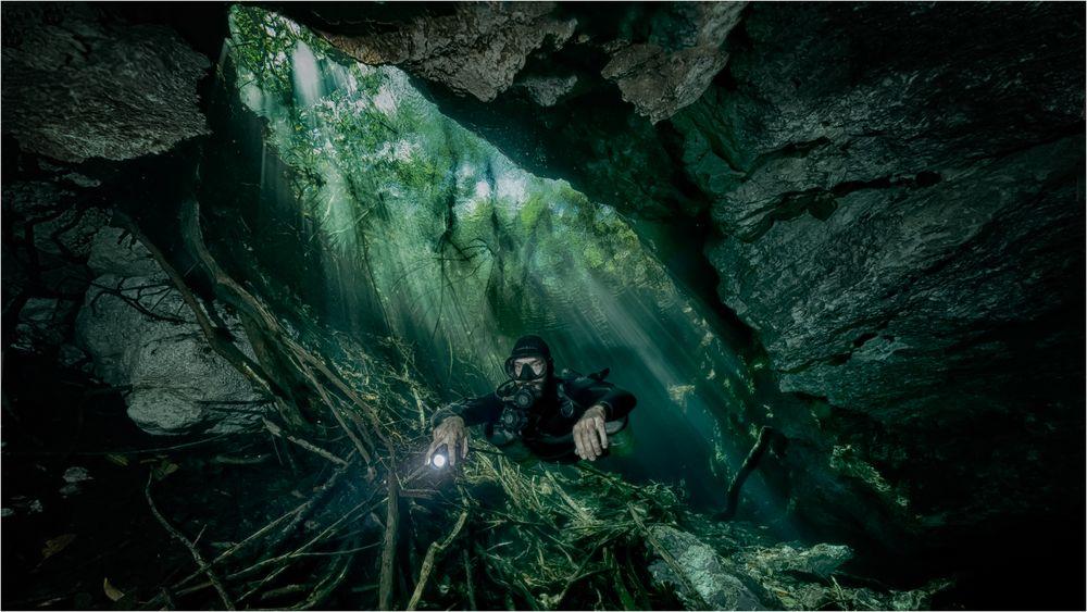 Jungle Diver