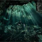 Jungle Diver II