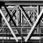 Jungle of steel