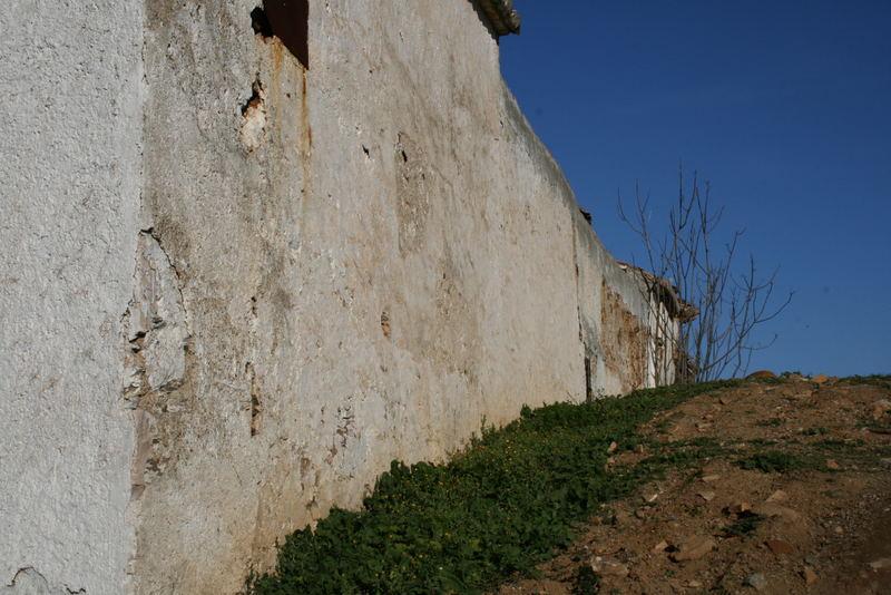 Junto al muro....