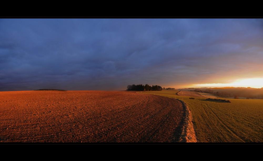 just a field | 01