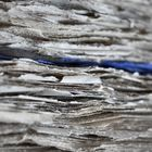 Just A Pile Of Paper II