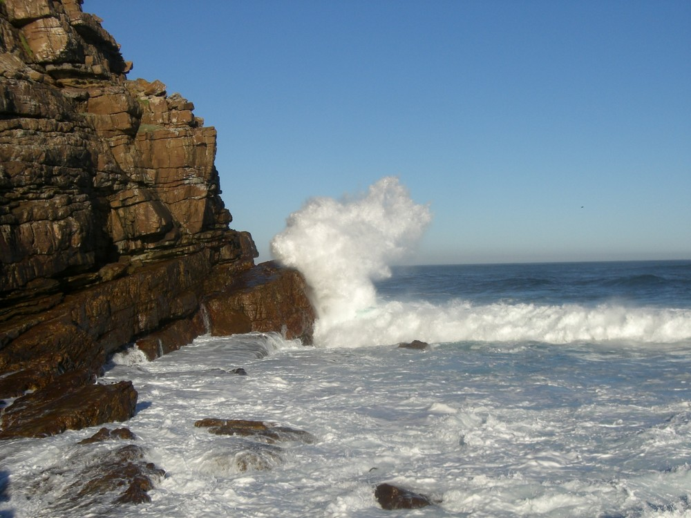 just a wave - cape ponit