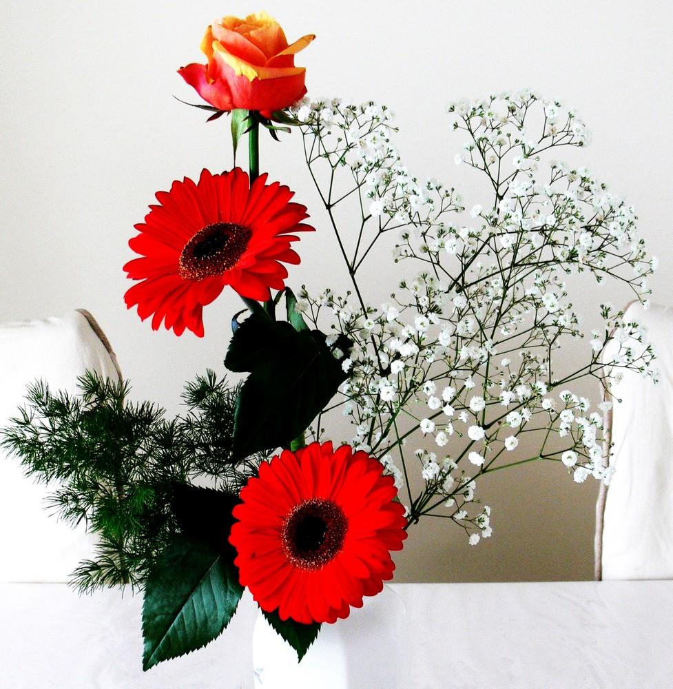 Juste quelques fleurs...
