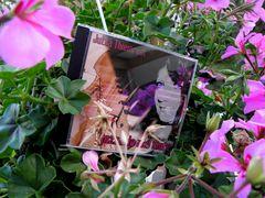 Jutta´s Erste ( CD ) ...ein Traum wurde wahr.