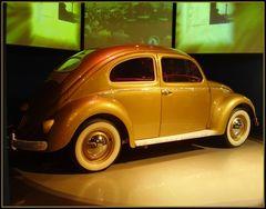 Käfer 1955