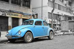 Käfer in Rio de Janeiro