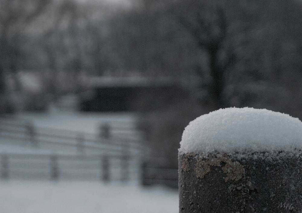 Kälte...