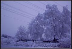 Kälte.