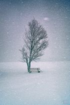Kälte im Herzen