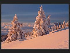 Kälte und Morgensonne