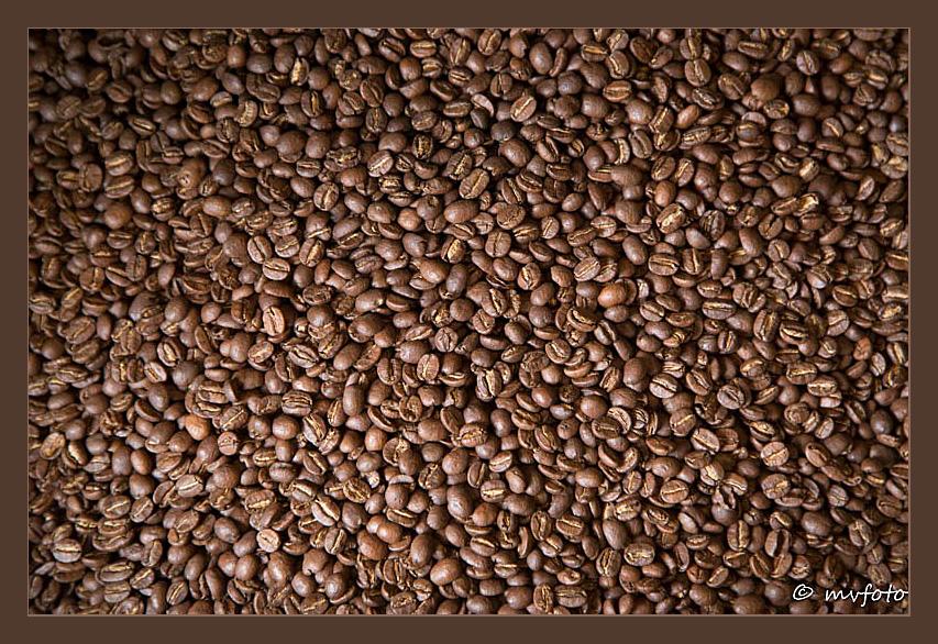Kaffee - eine Leidenschaft