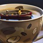 Kaffee -Fahrt- verspiegelt....
