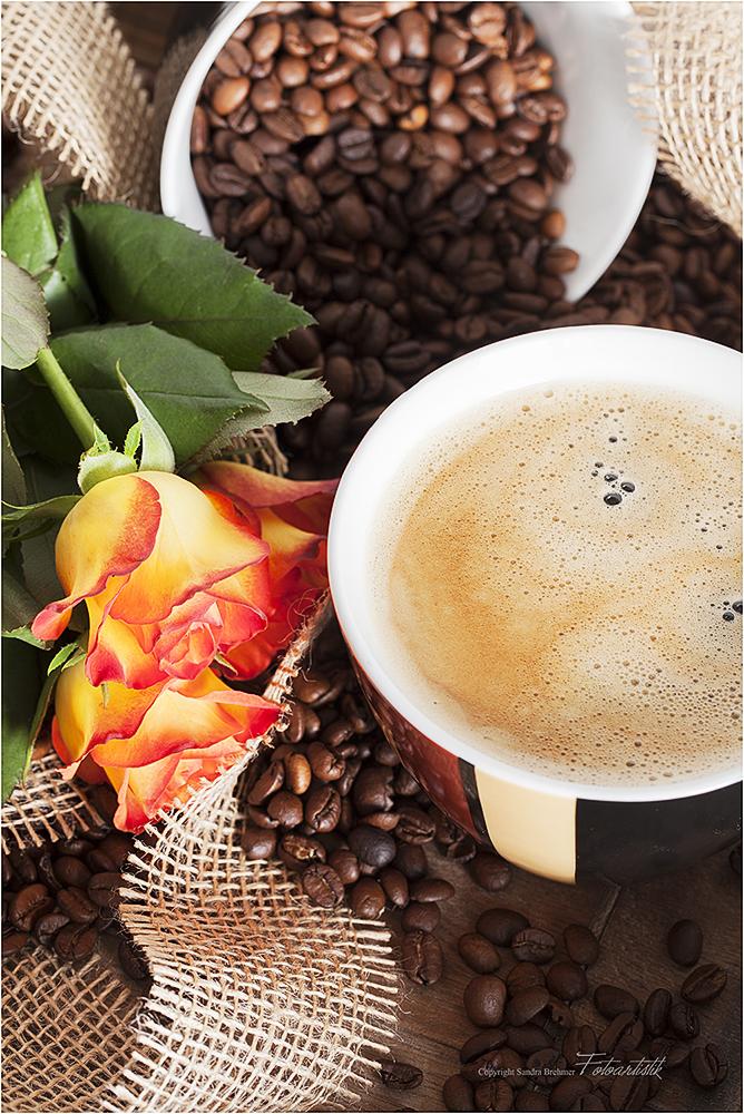 ~ kaffee - hafen ~