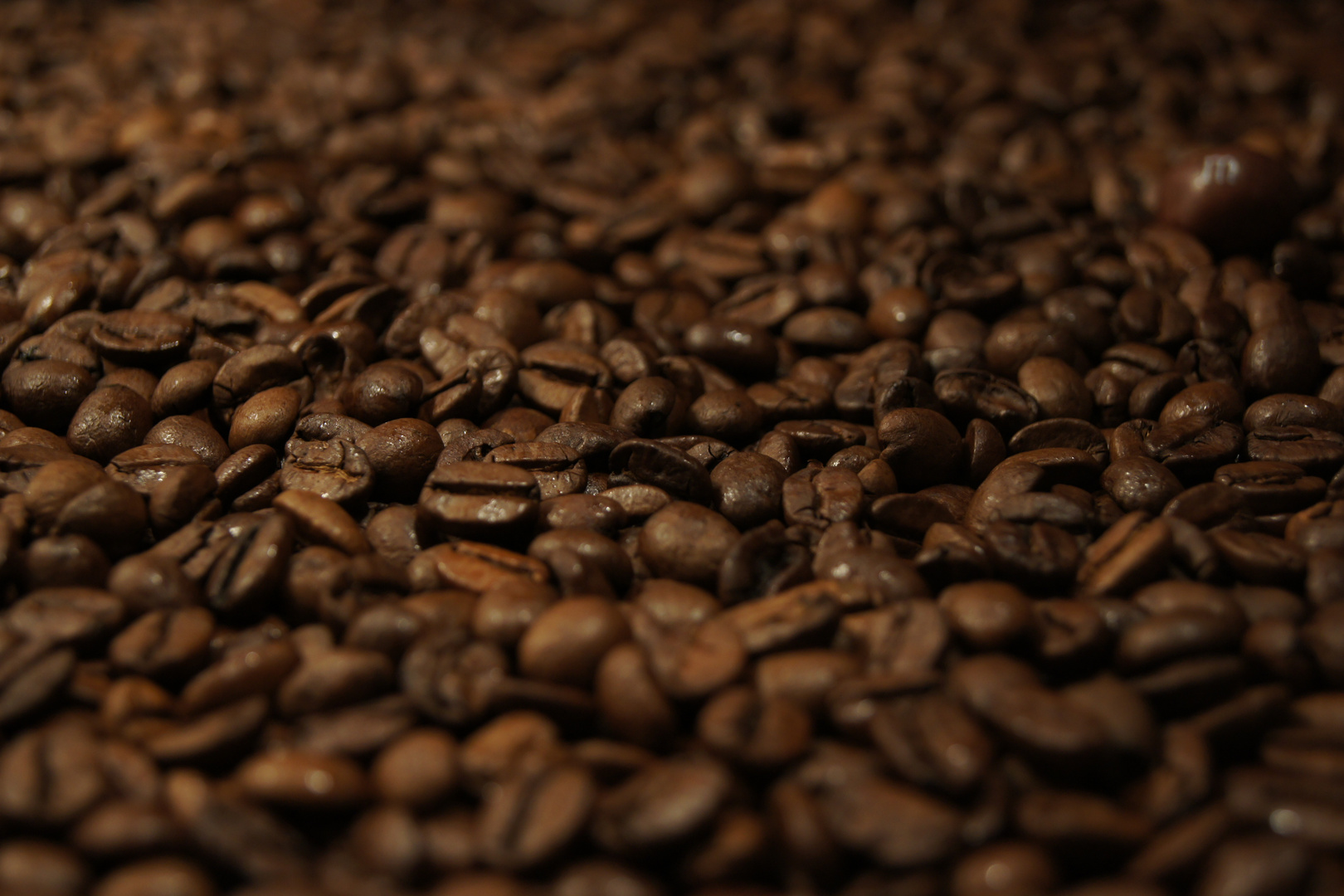 kaffee sucht