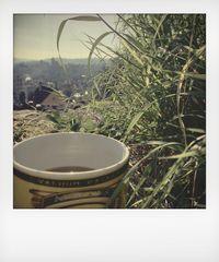 Kaffeegruß