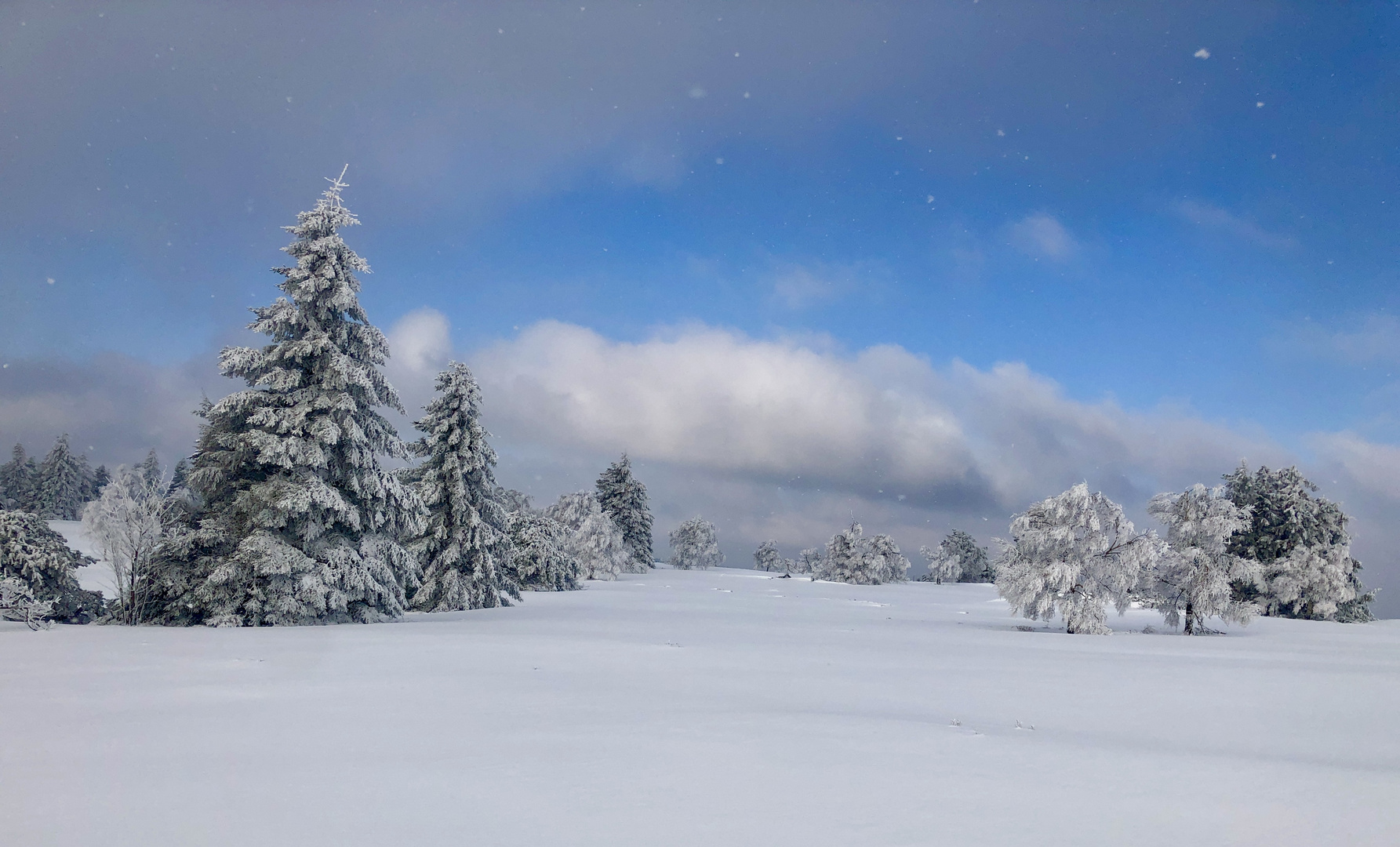 Kahler Asten im Schnee