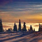 Kahler Asten, Winterabend in der Hochheide.