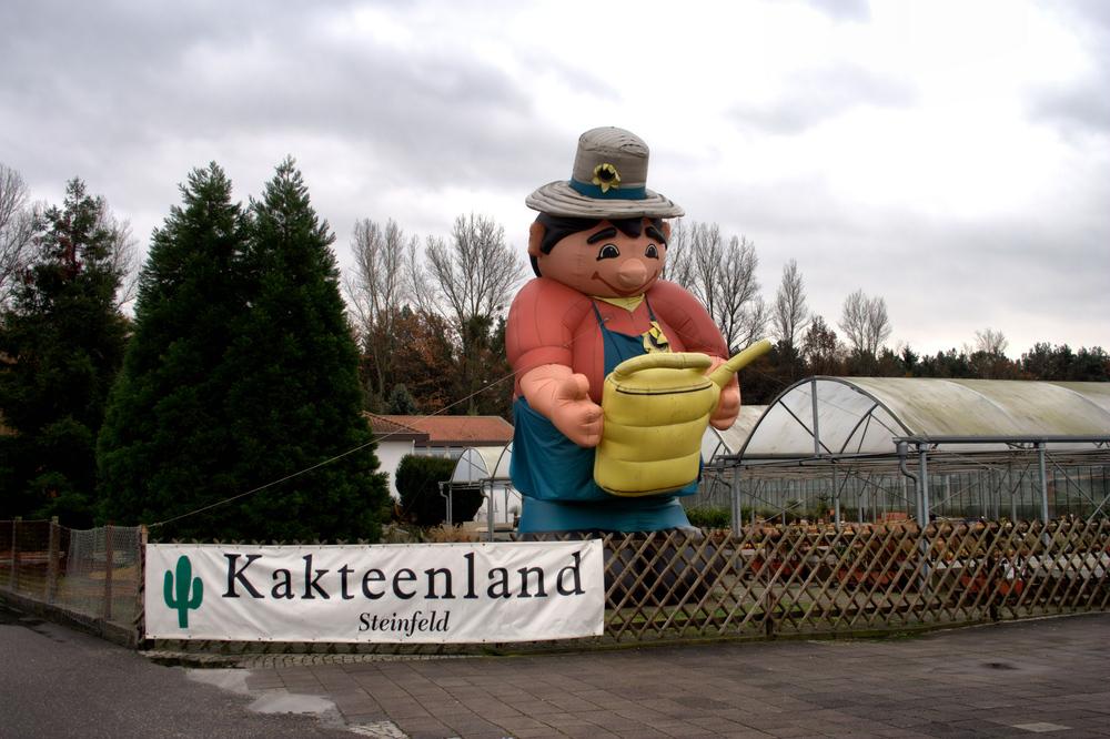 Kakteenland Steinfeld
