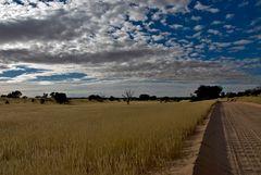 Kalahari 40