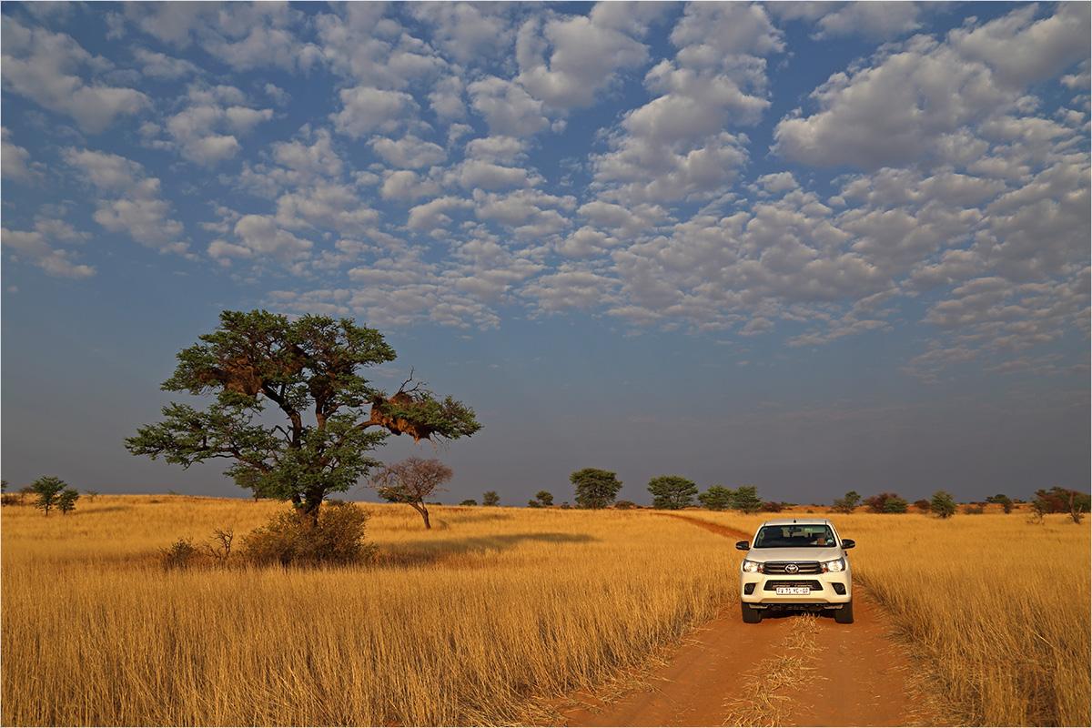 Kalahari Sky