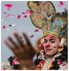 Kalbelia ~ Holi Rajasthan