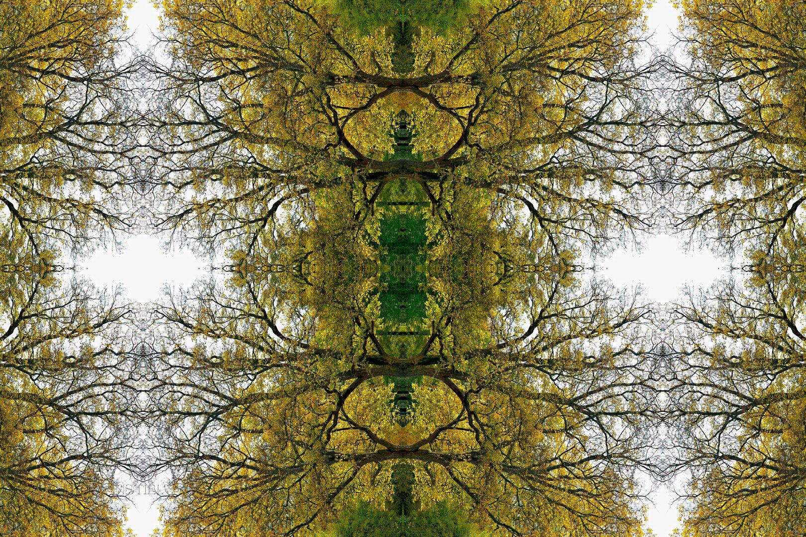 kaleidoskop I