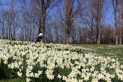 Kalendarische Frühling ab heute