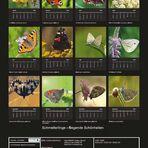 Kalender Backcover
