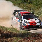 Kalle - der jüngste WRC-Rallye-Sieger