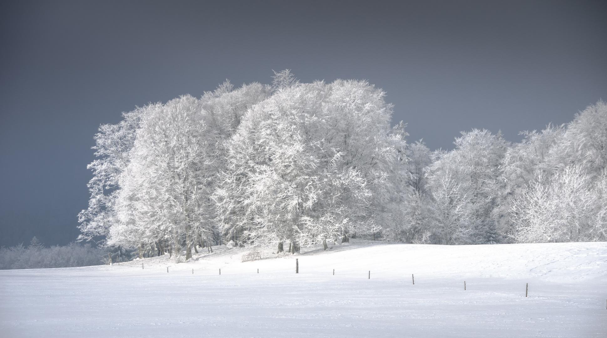 Kalt, kälter, am kältesten ... brrrrrrrrrr