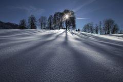 ~ kalte Schatten ~