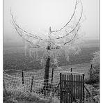 Kalter (dürrer) Engel