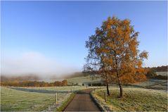 Kalter Herbstmorgen