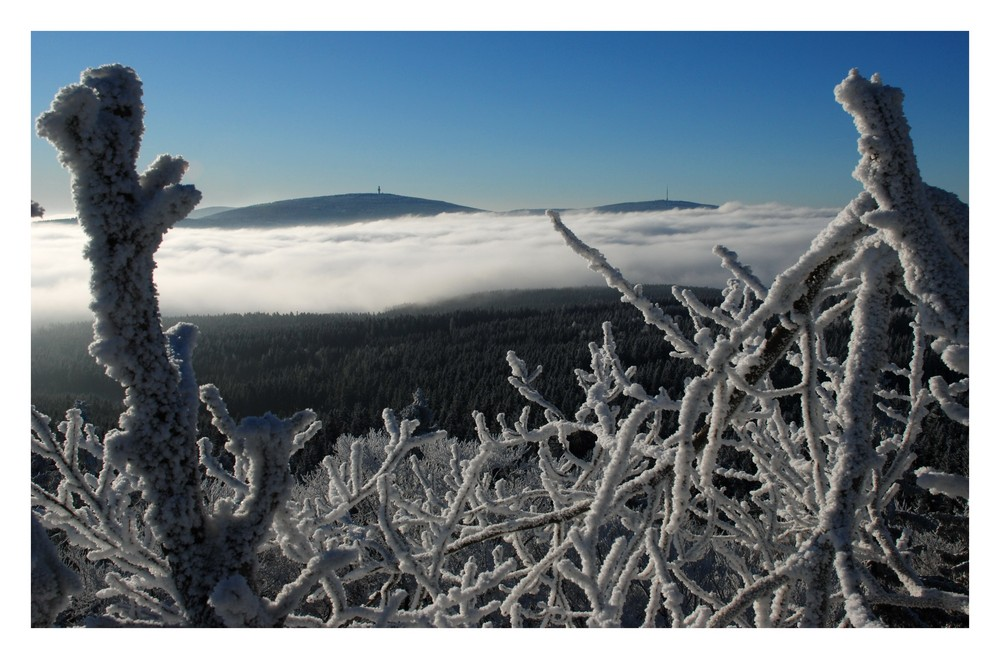 """Kaltes Winterlicht über dem """"Korallenriff"""""""