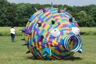 Kamen kite2011