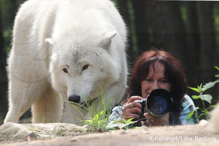 Kamera Asistent