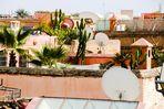 Kamine Kakteen Marrakesch maroc-05