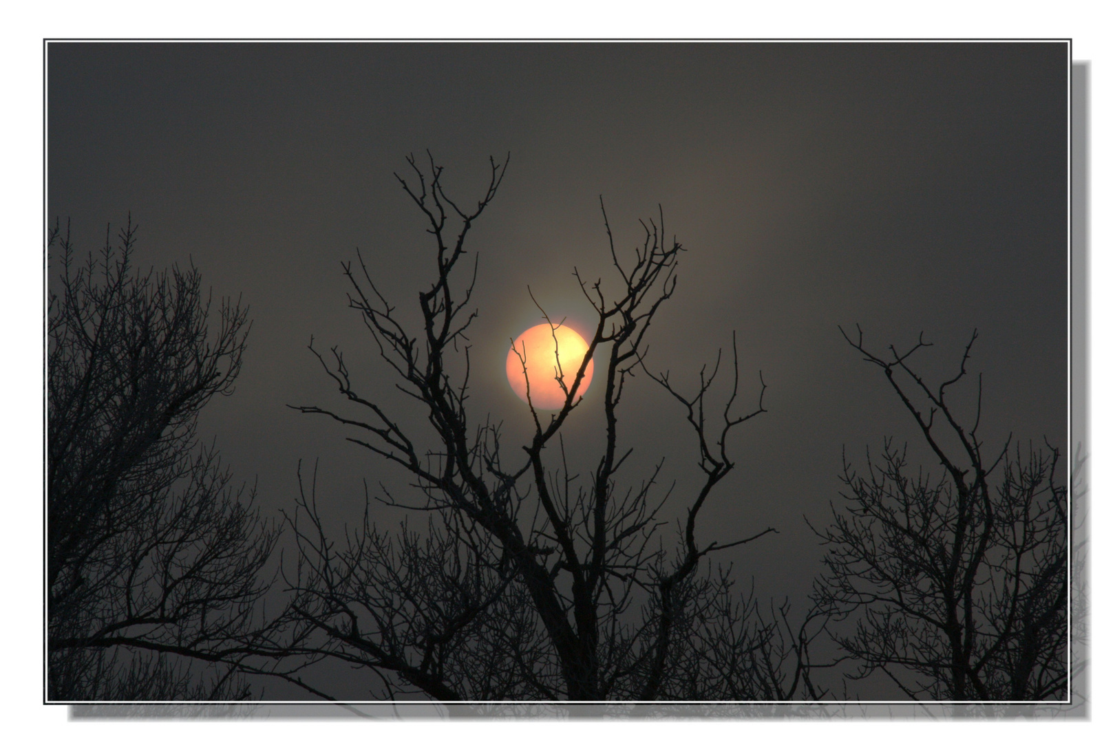 Kampf der Sonne