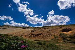 Kamschatkarose am Morsum Kliff
